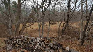 Photo 12: 11 Palmer Road in Harmony: 404-Kings County Vacant Land for sale (Annapolis Valley)  : MLS®# 202006110