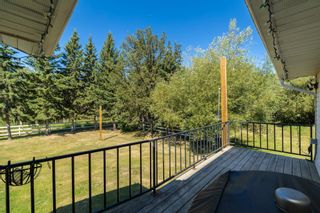 Photo 40: 49266 RGE RD 274: Rural Leduc County House for sale : MLS®# E4258454