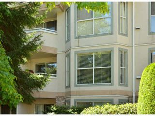 """Photo 17: 217 7161 121ST Street in Surrey: West Newton Condo for sale in """"The Highlands"""" : MLS®# F1418736"""