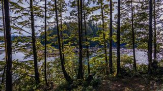 Photo 18: 863 Elina Rd in : PA Ucluelet Land for sale (Port Alberni)  : MLS®# 870302