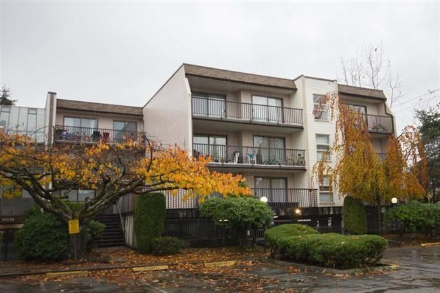 Main Photo: 211 15238 100 AVENUE in Surrey: Guildford Condo for sale (North Surrey)  : MLS®# R2239017