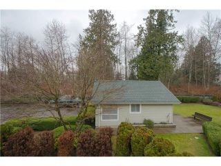 """Photo 19: 203 15439 100 Avenue in Surrey: Guildford Townhouse for sale in """"Plumtree Lane"""" (North Surrey)  : MLS®# F1404844"""