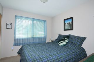 Photo 8: 9013 HAMMOND STREET in Mission: Mission BC House for sale : MLS®# R2010856