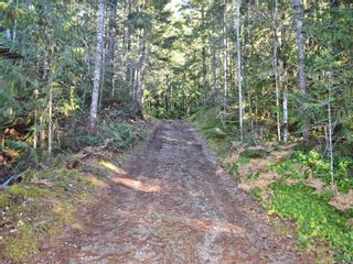 Photo 27: Lot 8 Gold River Hwy in : CR Campbell River West House for sale (Campbell River)  : MLS®# 861573