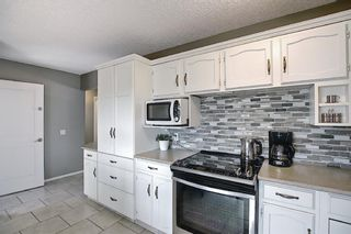 Photo 16: 2735 41A Avenue SE in Calgary: Dover Detached for sale : MLS®# A1082554