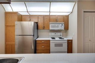 Photo 10: 120 17459 98A Avenue in Edmonton: Zone 20 Condo for sale : MLS®# E4248915