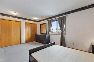 Photo 25: 19 Laguna Circle NE in Calgary: Monterey Park Detached for sale : MLS®# A1051148