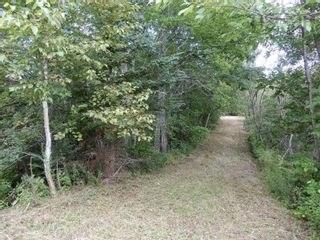 Photo 4: Salem Road in Greenhill: 108-Rural Pictou County Vacant Land for sale (Northern Region)  : MLS®# 202121181