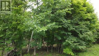 Photo 3: Lot 1 Indian Mountain Lane in Nemi: Vacant Land for sale : MLS®# 2097541