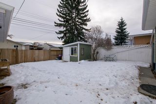 Photo 41: 246 Allan Crescent SE in Calgary: Acadia Detached for sale : MLS®# A1062297