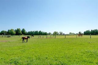 Photo 6: 22649-22697 NISSOURI Road: Thorndale Residential for sale (10 - Thames Centre)  : MLS®# 40162312
