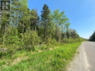 Photo 19: 5264 Rte 770 in Rollingdam: Vacant Land for sale : MLS®# NB058269