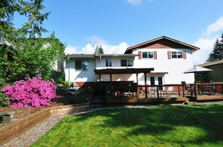 Photo 18: 22116 CANUCK Crescent in Maple Ridge: West Central House for sale : MLS®# R2061368