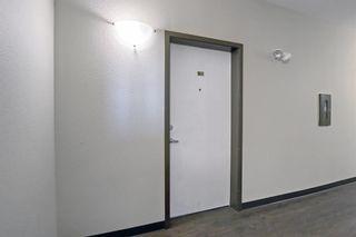 Photo 13: 2421 1140 Taradale Drive NE in Calgary: Taradale Apartment for sale : MLS®# A1148110