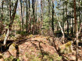 Photo 14: Lot VH-1 Highway 10 in Meisners Section: 405-Lunenburg County Vacant Land for sale (South Shore)  : MLS®# 202111350
