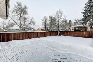 Photo 25: 4 Fawn Crescent SE in Calgary: Fairview Detached for sale : MLS®# A1066192