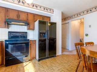 Photo 11: 239 Pinemill Road NE in Calgary: Pineridge Detached for sale : MLS®# A1021035