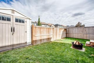 Photo 28: 216 Copperpond Road SE in Calgary: Copperfield Detached for sale : MLS®# A1034323