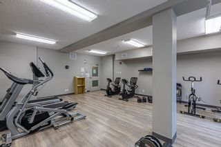 Photo 27: 233 503 ALBANY Way in Edmonton: Zone 27 Condo for sale : MLS®# E4240556