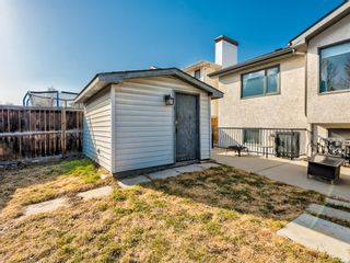 Photo 43: 76 Harvest Oak Place NE in Calgary: Harvest Hills Detached for sale : MLS®# A1090774