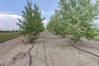 Photo 44: 174008B Range Road 214: Rural Vulcan County Detached for sale : MLS®# A1153640