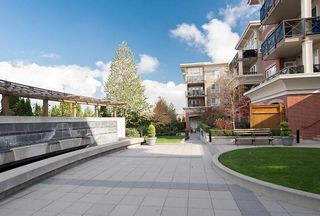 "Photo 19: 103 2970 KING GEORGE Boulevard in Surrey: Elgin Chantrell Condo for sale in ""WATERMARK"" (South Surrey White Rock)  : MLS®# R2011734"