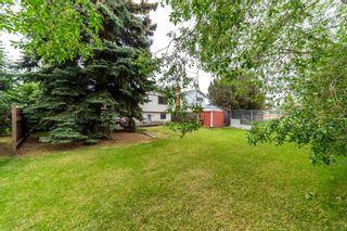 Photo 28:  in Edmonton: Zone 22 House for sale : MLS®# E4248753