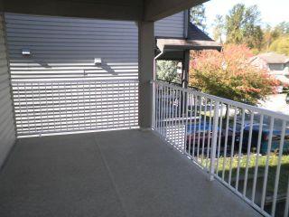 Photo 20: 23709 110B Avenue in Maple Ridge: Cottonwood MR House for sale : MLS®# R2114706