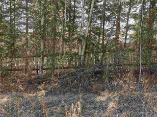 """Photo 2: 12925 CHERRY Road: Charlie Lake Land for sale in """"CHARLIE LAKE"""" (Fort St. John (Zone 60))  : MLS®# R2519694"""