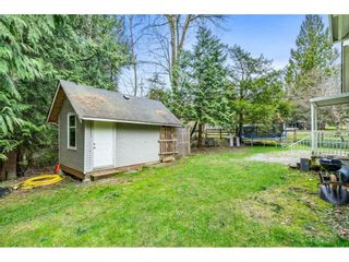 Photo 40: 27350 110 Avenue in Maple Ridge: Whonnock House for sale : MLS®# R2558952
