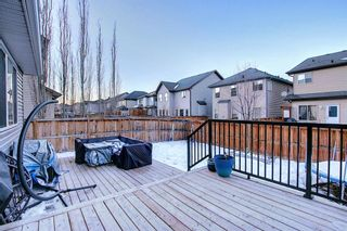 Photo 29: 7 SILVERADO RIDGE Crescent SW in Calgary: Silverado Detached for sale : MLS®# A1062081