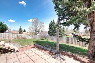 Photo 43: 128 MILLSIDE Drive SW in Calgary: Millrise Detached for sale : MLS®# C4296698