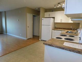 Photo 7: 507 9710 105 Street in Edmonton: Zone 12 Condo for sale : MLS®# E4236897