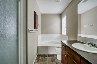 Photo 26: 51 Skyview Springs Cove NE in Calgary: Skyview Ranch Detached for sale : MLS®# C4186074