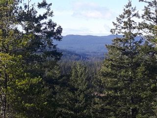 Photo 8: Lot 2 Bold Point Rd in : Isl Quadra Island Land for sale (Islands)  : MLS®# 860487