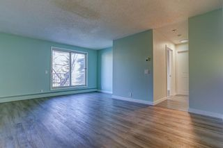 Photo 13: 210 525 56 Avenue SW in Calgary: Windsor Park Apartment for sale : MLS®# A1086866