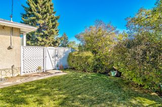 Photo 46: 7003 Hunterview Drive NW in Calgary: Huntington Hills Detached for sale : MLS®# A1148767