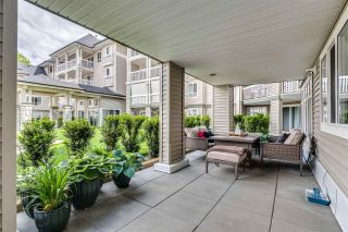 """Photo 22: 119 22022 49 Avenue in Langley: Murrayville Condo for sale in """"Murray Green"""" : MLS®# R2583711"""