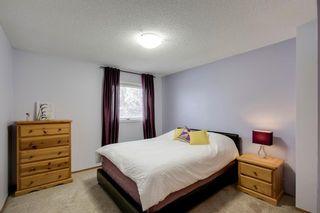 Photo 23: 260 Douglasbank Place SE in Calgary: Douglasdale/Glen Detached for sale : MLS®# A1042919