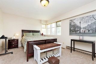 Photo 6: 10036 157A Street in Surrey: Guildford House for sale (North Surrey)  : MLS®# R2448128