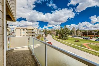 Photo 21: 308 3717 42 Street NW in Calgary: Varsity Apartment for sale : MLS®# A1105882