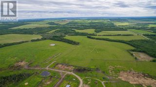 Photo 4: 15166 BUICK CREEK ROAD in Fort St. John (Zone 60): Agriculture for sale : MLS®# C8030416