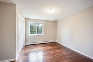 Photo 11: 202 4455C Greenview Drive NE in Calgary: Greenview Apartment for sale : MLS®# A1110677