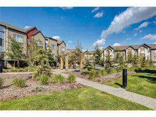 Photo 33: Luxury Calgary Realtor Steven Hill SOLD Copperfield Condo