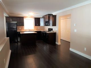 Photo 5: 10558 245th Street in Maple RIdge: Albion House for sale or rent (Maple Ridge)