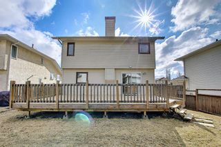 Photo 36: 30 MACEWAN RIDGE Place in Calgary: MacEwan Glen Detached for sale : MLS®# A1092445