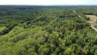 Photo 2: PARCEL A Barneys River Road in Avondale: 108-Rural Pictou County Vacant Land for sale (Northern Region)  : MLS®# 202016062