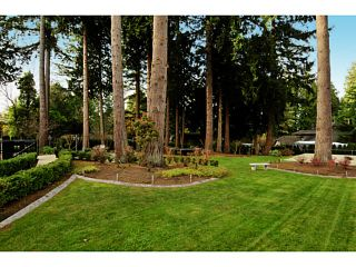 """Photo 14: 12855 CRESCENT Road in Surrey: Elgin Chantrell House for sale in """"Crescent Beach / Ocean Park"""" (South Surrey White Rock)  : MLS®# F1413765"""