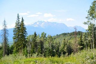 "Photo 24: LOT 1 HISLOP Road in Smithers: Smithers - Rural Land for sale in ""Hislop Road Area"" (Smithers And Area (Zone 54))  : MLS®# R2491414"