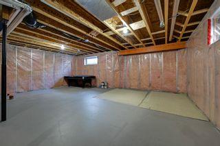 Photo 39: 9266 212 Street in Edmonton: Zone 58 House for sale : MLS®# E4249950